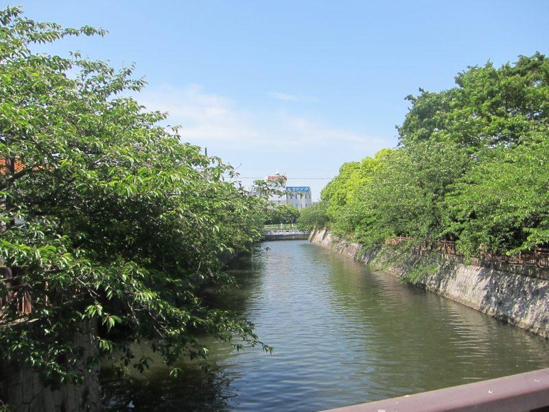 海老川河川敷